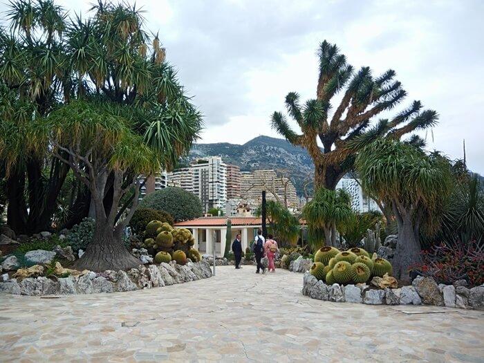 ogród egzotyczny monako