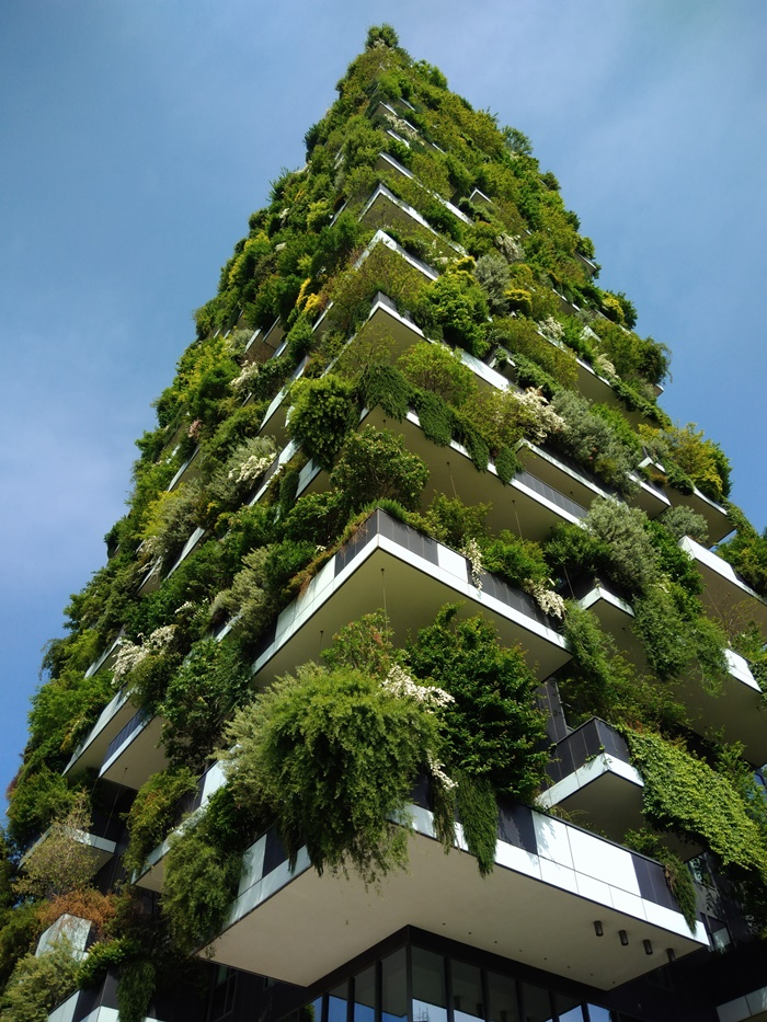drzewa na balkonach mediolan